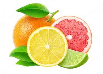 Южни плодове